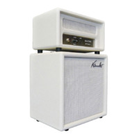 Mini half-stack with Custom Amp Stingray White/ Front White