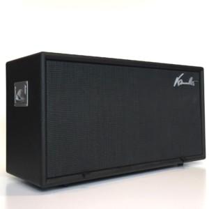 Gebrauchte Gitarrenbox Big-Bi