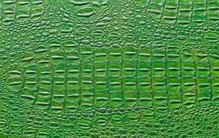 Croco-Green