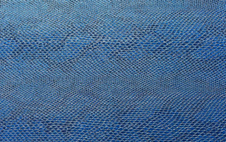 Snake-Blue